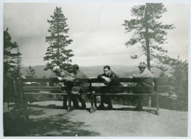 Ådalens poesi - image 5