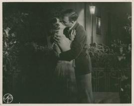 Fridas visor - image 66