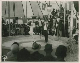 Fridas visor - image 130