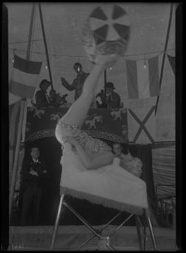 Fridas visor - image 83