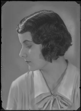 Fridas visor - image 27