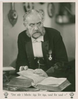 Victor Sjöström - image 4