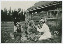 Flickan från Värmland - image 16