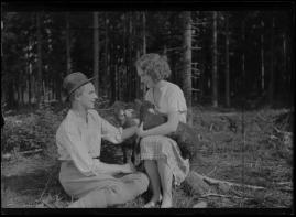 Flickan från Värmland - image 45
