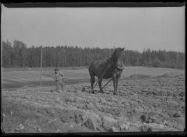 Flickan från Värmland - image 21