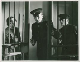 Lika inför lagen - image 4