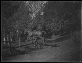 En natt - image 82