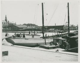 Skepparkärlek : En hamnhistoria om gungande gastar - sjungande skeppare - snoppade smugglare - carnegie och kärlek - image 100