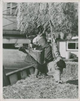 Skepparkärlek : En hamnhistoria om gungande gastar - sjungande skeppare - snoppade smugglare - carnegie och kärlek - image 5