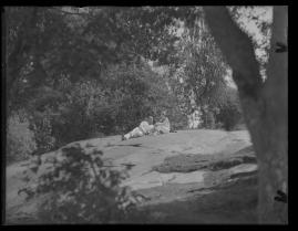 Lyckans gullgossar : Ett filmkåseri med sång - image 98