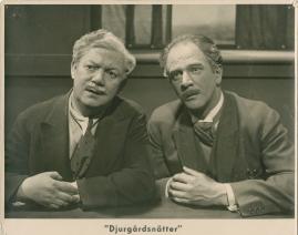Djurgårdsnätter - image 3