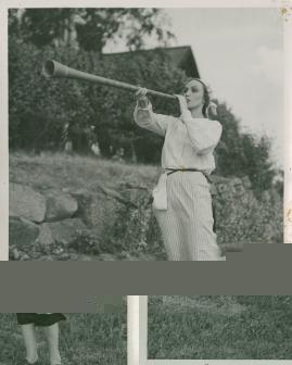 Hälsingar - image 8