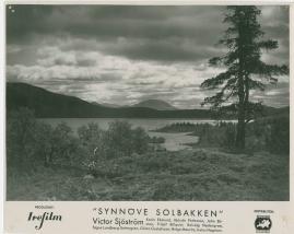 Synnöve Solbakken - image 17