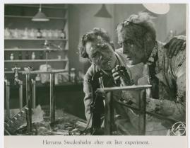 Swedenhielms - image 12