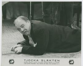 Tjocka släkten - image 41