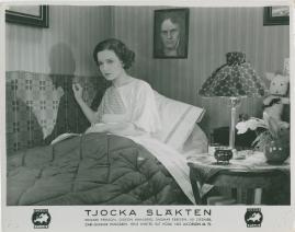 Tjocka släkten - image 26