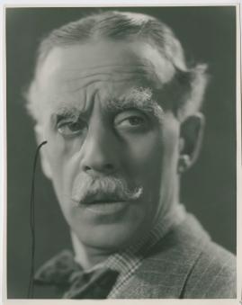 Flickornas Alfred - image 27
