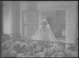 Bröllopsresan - image 85