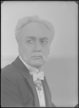 Johan Ulfstjerna - image 36