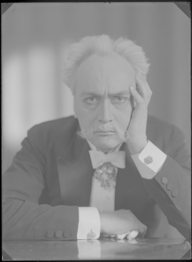 Johan Ulfstjerna - image 37