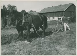 Flickorna på Uppåkra - image 43