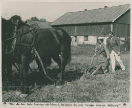 Flickorna på Uppåkra - image 46