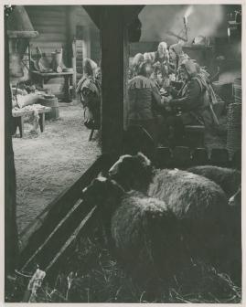 Adolf Armstarke - image 17