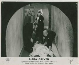 Bleka greven - image 38