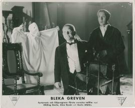 Bleka greven - image 29