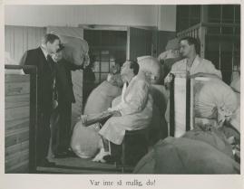 Familjen Andersson - image 30