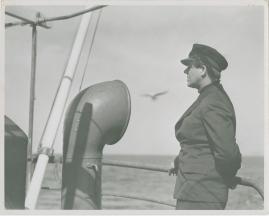 En sjöman går iland - image 19