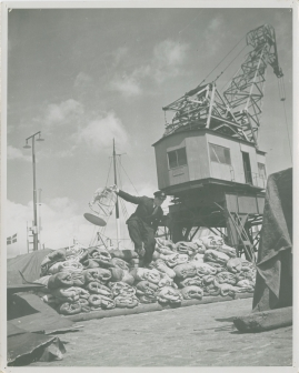 En sjöman går iland - image 12