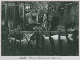 Laila - image 32