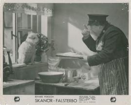 Skanör-Falsterbo - image 19