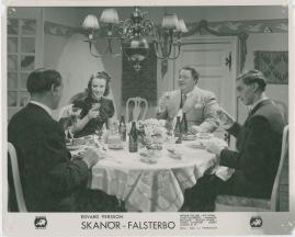 Skanör-Falsterbo - image 8