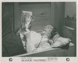 Skanör-Falsterbo - image 9