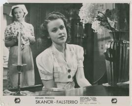 Skanör-Falsterbo - image 63