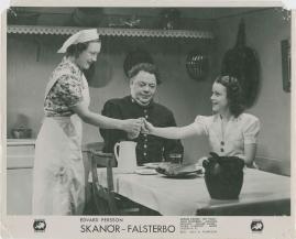 Skanör-Falsterbo - image 28