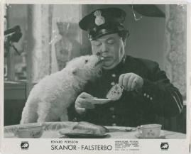 Skanör-Falsterbo - image 42