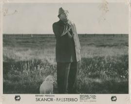 Skanör-Falsterbo - image 54