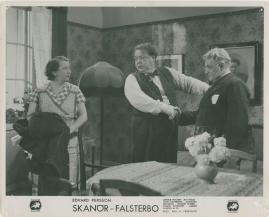 Skanör-Falsterbo - image 68