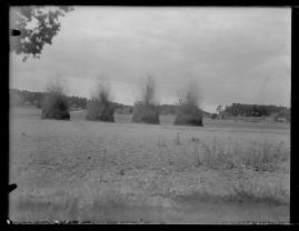 Landstormens lilla Lotta - image 98