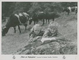 Folket på Högbogården - image 16