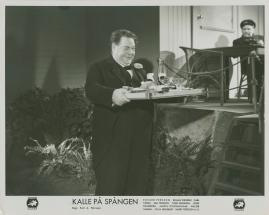 Kalle på Spången - image 15