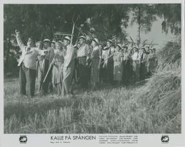 Kalle på Spången - image 6