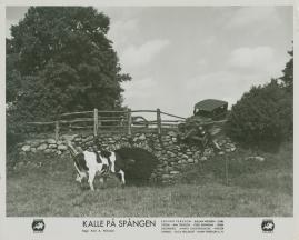 Kalle på Spången - image 7