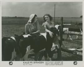 Kalle på Spången - image 11