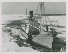 Valfångare - image 166