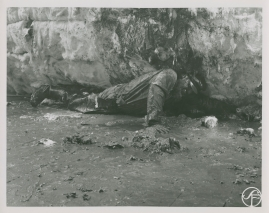 Valfångare - image 169