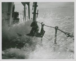 Valfångare - image 309